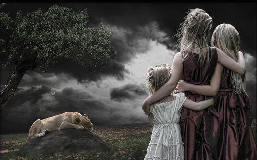 Обои Две девушки и девочка стоят, обнявшись, наблюдая за львицей, лежащей на камне под деревом
