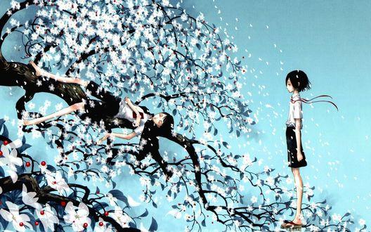 Обои Мальчик спит на ветке цветущей сакуры, на него смотрит второй мальчик, стоящий рядом