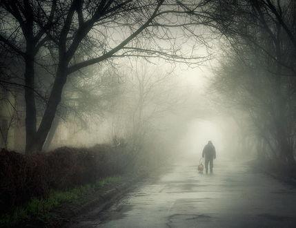 Обои Мужчина, выгуливающий собаку по аллеи парка, покрытой влагой после прошедшего дождя на фоне густого утреннего тумана, фотография Scorpio (Игорь Мелекесцев)