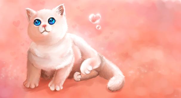 Обои Белая кошечка с голубыми глазами, автор Violla-dekl