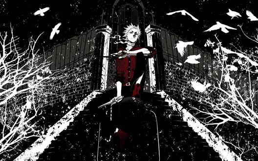 Обои Парень с пистолетами в руках на фоне лестницы, ведущей к воротам церкви, летают птицы