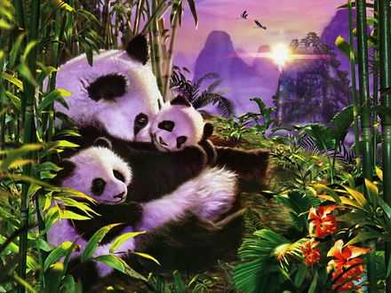 Обои Панда, сидящая в густых зарослях папоротника и бамбука, нежно прижимает к себе двух своих детенышей на фоне гор, заходящего солнца и парящих в небе птиц