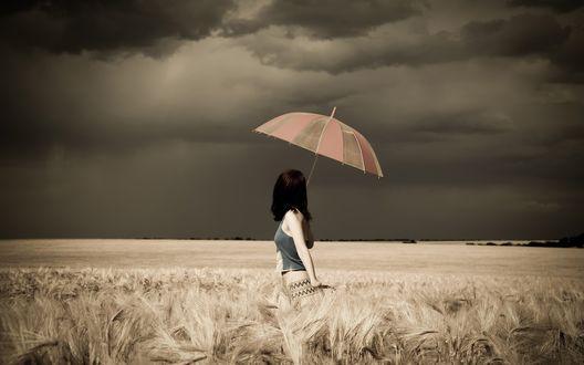 Обои Девушка с зонтом стоит в поле и смотрит на небо