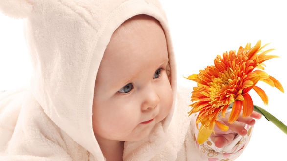 Обои Маленький ребенок с оранжевым георгином