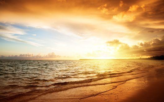 Обои Золотой закат над морским пляжем