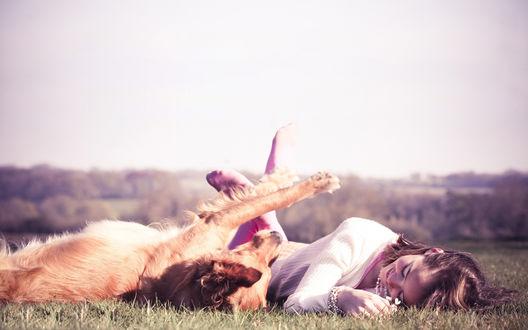 Обои Девушка и ее рыжий пес валяются на летней лужайке наслаждаясь летним днем