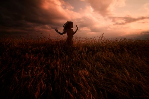 Обои Девушка в поле на фоне облачного неба