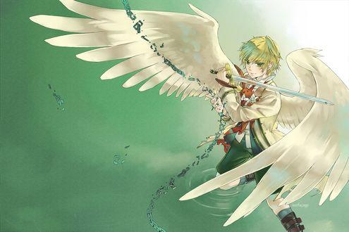 Обои Oz Vessalius / Оз Безариус из аниме Сердца Пандоры / Pandora Hearts с крыльями за спиной с мечом в руках