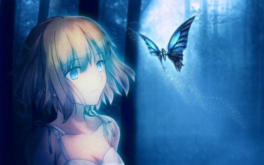Обои Светловолосая девушка смотрит на летящую бабочку