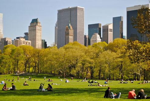 Обои Люди отдыхают на траве в Центральном Парке / Central Park солнечным осенним днем, Нью-Йорк, США / New York, USA