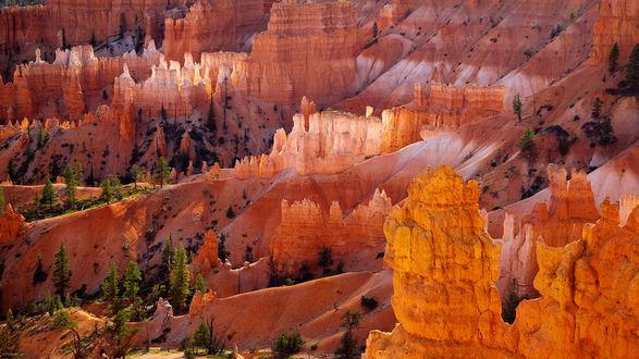 Обои Национальный парк Брайс-Каньон / Bryce Canyon National Park, штат Юта, США / Utah, USA