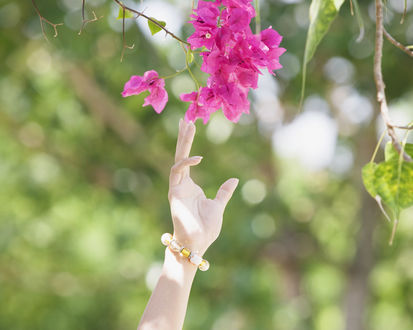 Обои Женская рука тянется к цветущей ветки