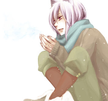 Обои Tomoe / Томоэ из аниме и манги Очень приятно, Бог / Kamisama Hajimemashita