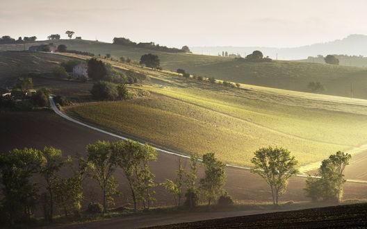Обои Зеленая долина при свете солнца с маленькими домиками