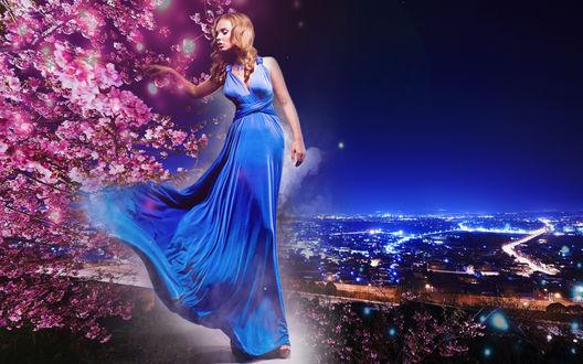 Обои Дочь сакуры и ночи - девушка в длинном синем платье появляется из тумана у цветущей сакуры