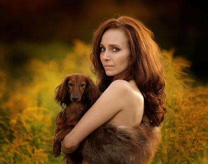 Обои Красивая рыжеволосая девушка модельной внешности в меховой жилетке, держащая в руках таксу шоколадного окраса, позирует на фоне кустов с желтыми листьями, фотография Kasia Mycatherina Pietraszko