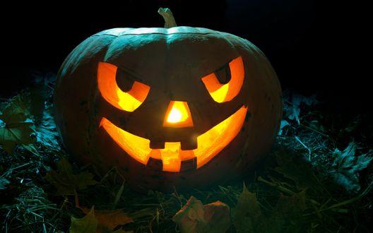 Обои Светильник Джека / Jack Light, вырезанный из тыквы с ярко светящимися атрибутами лица, лежащий в траве среди листьев на черном фоне