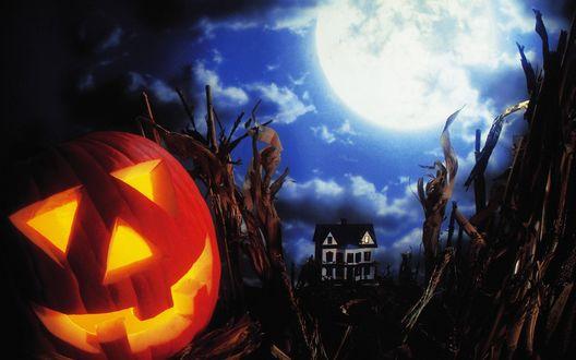 Обои Светильник Джека / Jack Light, лежащий среди сухого тростника на фоне ночного пасмурного неба, ярко светящейся луны и двухэтажного домика с мансардой