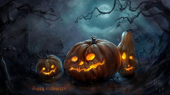Обои Три зловещих светильника Джека / Jack Light под ночным небом (Happy Holloween)