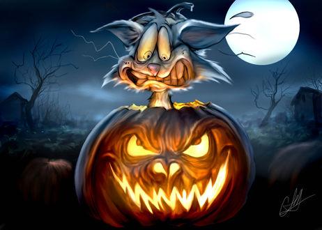 Обои Перепуганный кот сидит в светильнике Джека / Jack Light, который зловеще смотрит на него на фоне луны, ночью в Halloween / Хэллоуин