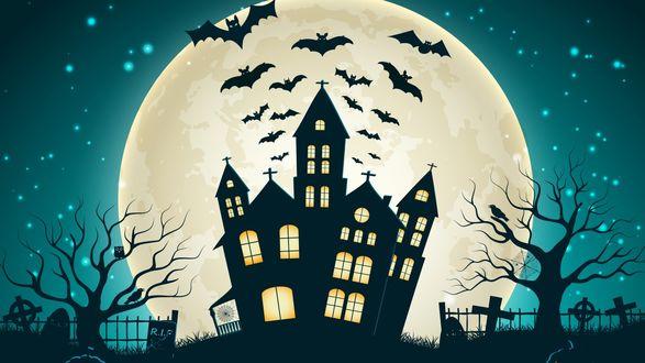 Обои Дом, над которым летят летучие мыши и сзади виднеется полная луна в небе