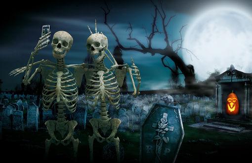 Обои Два скелета с телефоном, на надгробном памятнике сидит мышка, справа светильник Джека / Jack Light, на заднем плане кладбище и сухое дерево на фоне ночного неба с голубой луной в Halloween / Хэллоуин