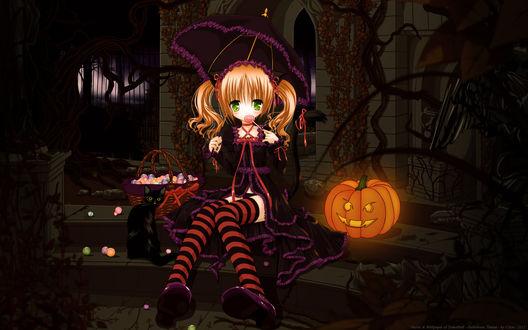 Обои Neko girl / неко-девочка в платье и полосатых чулках, под зонтиком, сидит на ступеньках и ест леденец, рядом сидит черный кот, стоит корзинка со сладостями и горит светильник Джека / Jack Light в Хэллоуин / Halloween