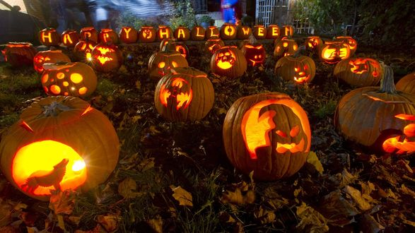 Обои Из спелых тыкв в огороде, усыпанном желтыми листьями, сделаны светильники Джека / Jack Light и надпись Happy Halloween / Счастливый Хэллоуин