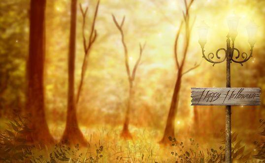 Обои Табличка Счастливого Хэллоуина / Happy Halloween на фонаре в осеннем лесу