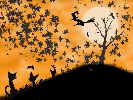 Обои Хэллоуинское настроение, ведьма на метле на фоне полной луны, котята смотрят на летучих мышей и падающие листья