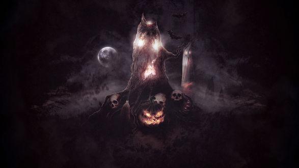 Обои Старое дерево держит в руке-ветки привидение, у его корней стоит светильник Джека / Jack Light, помело и лежат черепа, в ночном небе парят летучие мыши и светит полная Луна