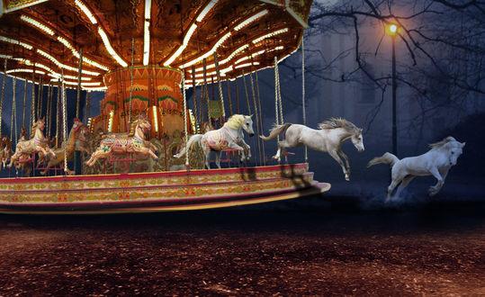 Обои Белые лошади оживают и убегают с карусели