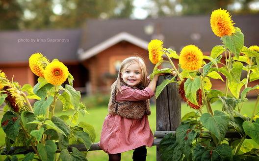Обои Милая, светловолосая улыбающаяся девочка в меховой жилетке, держащаяся руками за деревянный столбик и сидящая на перекладине ветхого забора рядом с цветущими желто-оранжевыми георгинами, фотография Ирины Сапроновой / Irina Sapronova