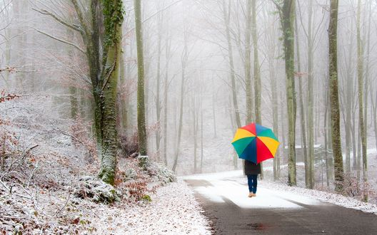 Обои Девушка с радужным зонтом идет по заснеженной дороге в окружении деревьев