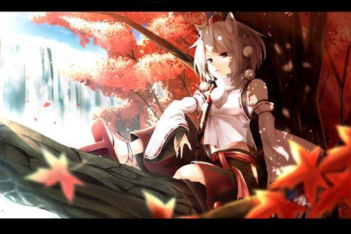 Обои Inubashiri Momiji / Инабушири Момидзи из игры Tohou Project / Проект Восток