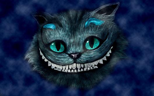 Обои Чеширский кот / Сheshire cat из мультика Алиса в стране чудес / Alice in Wonderland на синем фоне