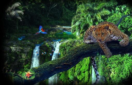 Обои Леопард, лежащий на стволе дерева, находящегося над глубоким ущельем с водопадами, тропической зеленью, летящей стаей попугаев ара