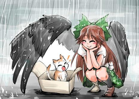 Обои Utsuho Reiuji / Утсухо Рейуджи из игры Touhou Project / Проект Восток укрывает своим крылом от дождя кошку, сидящую в коробке