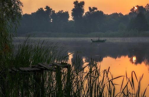 Обои Рыбак, сидящий в лодке на реке, освещенной золотистыми лучами утреннего восходящего солнца, отражающего в зеркальной водной глади, легкими клубами тумана у берега, покрытого зеленой осокой и деревьями, автор Scorpio