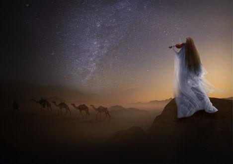 Обои Длинноволосая девушка в белом, пышном, длинном платье, стоящая на каменном утесе, играет на скрипке, внизу по пустынной местности идет караван верблюдов с погонщиком на фоне ночного звездного неба и Млечного пути, автор Nataliorion