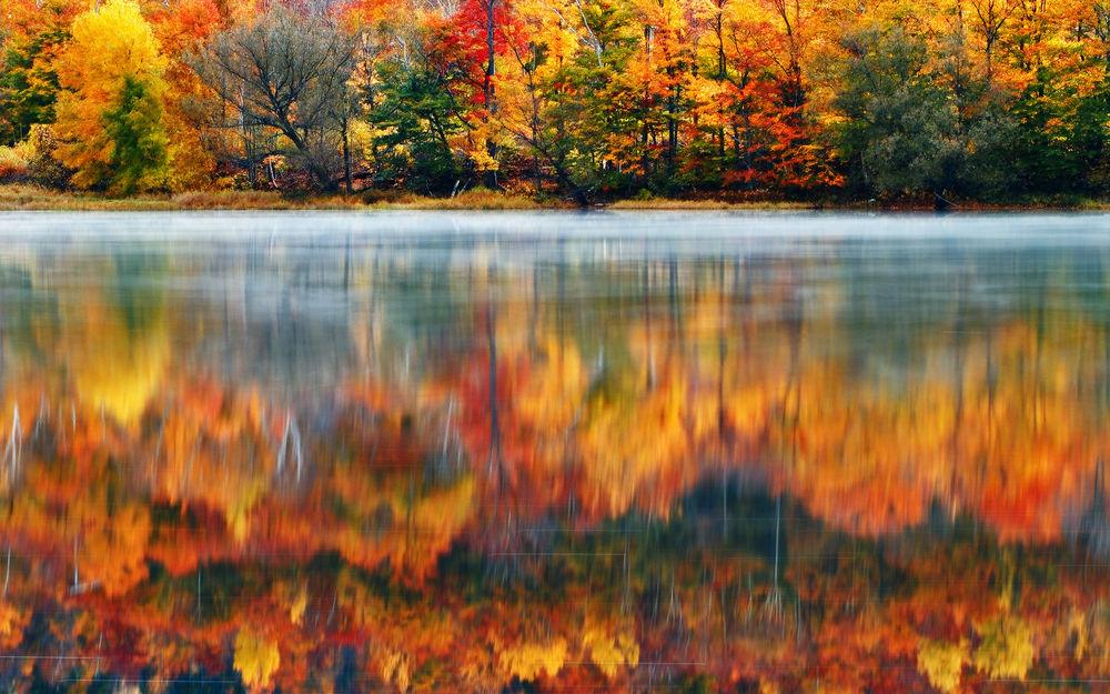 Добрым утром, отражение в воде картинки осень