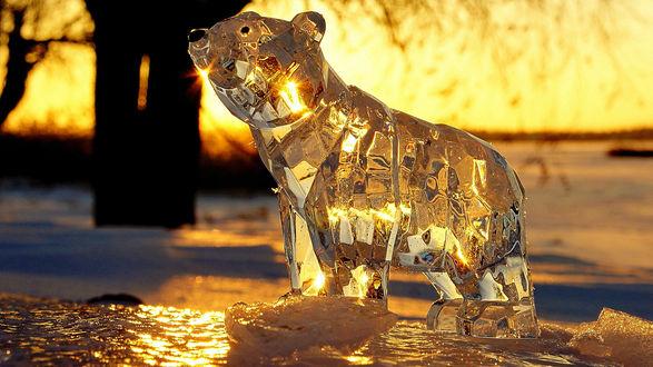 Обои Красивый, стеклянный медведь зимой в виде прозрачной фигурки на закате