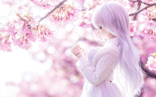 Обои Куколка на фоне цветущей сакуры