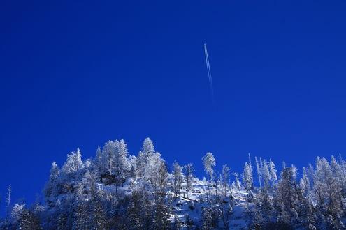 Обои Гора с растущими деревьями усыпаны снегом и самолет в небе оставляющий за собой след выхлопных газов