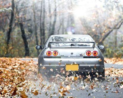 Обои Nissan Skyline GT-R / Ниссан Скайлайн едет по дороге усыпанной листвой
