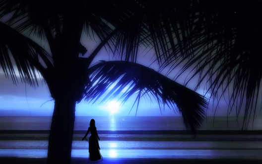 Обои Стройная девушка в длинном легком платье, стоящая возле пальмы на тропическом океанском побережье, любуется красивым закатом солнца