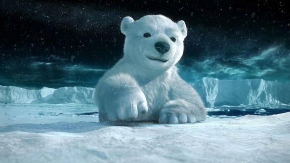 Обои Маленький пушистый, полярный медвежонок поднимает косматую лапу и улыбается