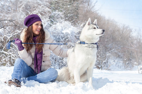 Обои Девушка с лайкой на поводке сидят на снегу