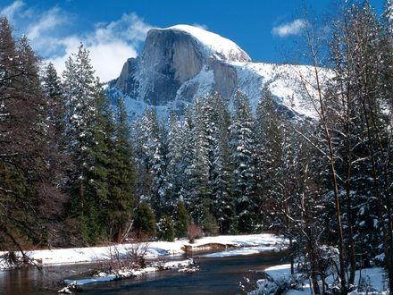 Обои Река протекает вдоль деревьев и заснеженных гор