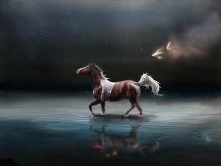 Обои Гнедая лошадь с белыми пятнами идет в воде где плавают рыбы, приподняв голову к звездному небу в котором позади плывет рыбка, автор Yewrezz